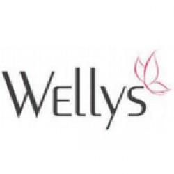 Wellys Προϊόντα Για Κάθε Σου Ανάγκη!  | StarkStores